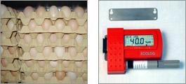 Datalogger for egg/vegetable storage